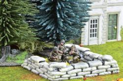 Photo of Romanian Mortar Team (ROM006)