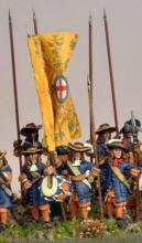 Photo of Pikeman's Lament Dutch Pike Unit (PikLam006)