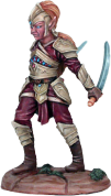 Photo of Male Elven Dual Wield Warrior (DSM7405)